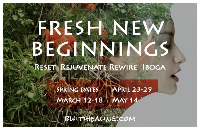 bwiti-healing-retreat-march-2018 iboga retreat canada spring
